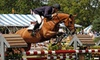 Traders Point Hunt Charity Horse Show and Country Fair - Eagle: One Day at Traders Point Hunt Charity Horse Show and Country Fair for Two at Wild Air Farm on August 7–12 (Half Off)