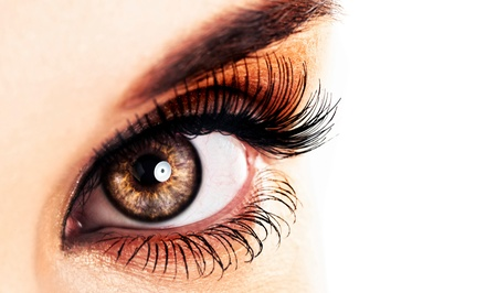 $66 for One Full Set of Faux Mink or Silk Eyelash Extensions with One Fill at Flirt & Flutter ($260 Value)