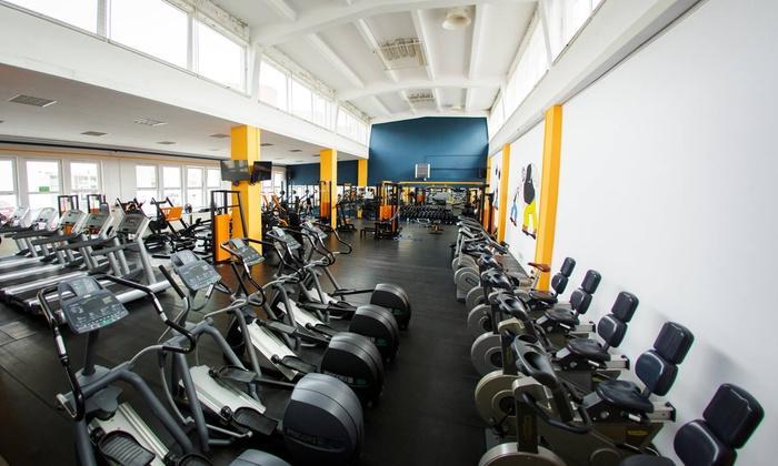 Miesięczny karnet open na siłownię (69,99 zł) z basenem (99,99 zł) i więcej opcji w Papaj Gym (do -38%)