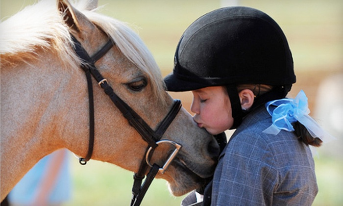 Fox Hollow Farm - Mooresville: Two or Four 30-Minute Private Horseback-Riding Lessons at Fox Hollow Farm in Mooresville (Up to 57% Off)