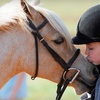 Up to 57% Off Horse-Riding Lessons in Mooresville