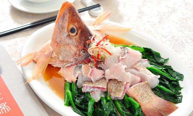 Ducking_Tycoon_Restaurant_-_4-1000x600.jpg