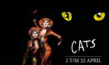 CATS: de internationale hitmusical in het Nieuwe Luxor Theater in Rotterdam en MartiniPlaza Groningen