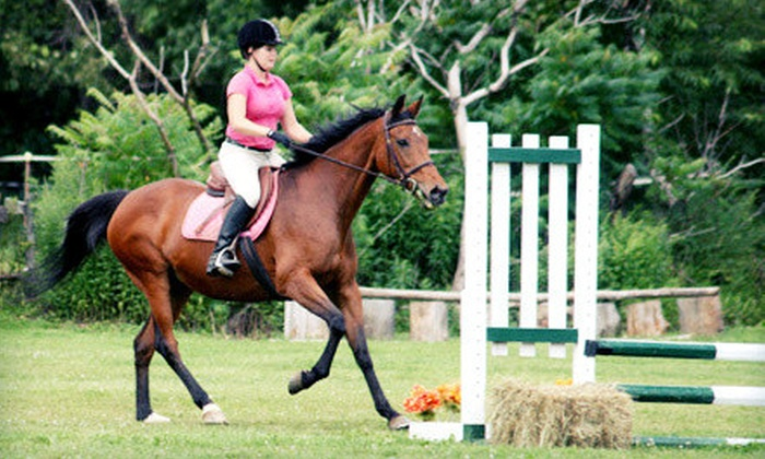 Spruce Meadow Farm - Clarence: 1 or 3 Horseback-Riding Lessons for 1, 1 Lesson for 2, or Pony Party for Up to 10 at Spruce Meadow Farm (Up to 67% Off)