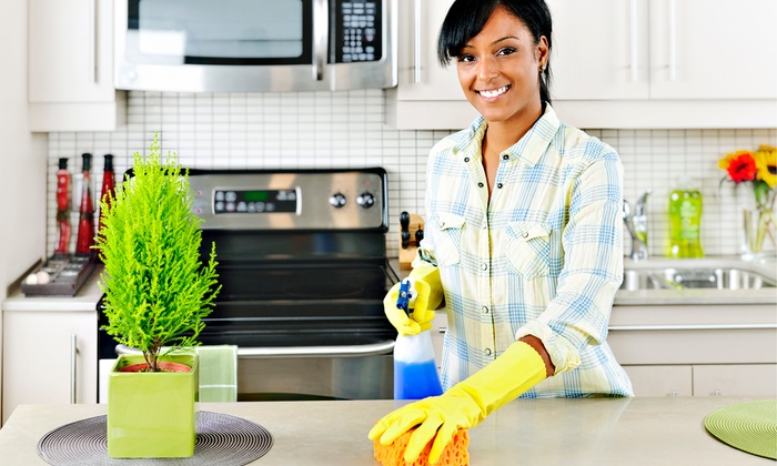 Wholly Cleaning & Maintenance - Brooklyn Heights: One or Three Two-Hour Cleanings or One Two-Hour Commercial Cleaning by Wholly Cleaning & Maintenance (Up to 67% Off)