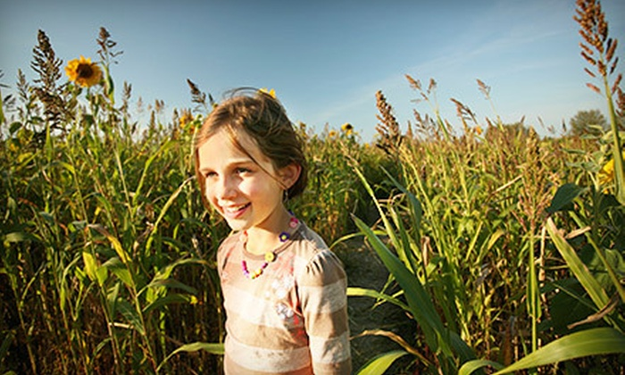 Lee Farms - Lee Farms: $14 for Four Passes to the Corn Maze at Lee Farms ($28 Value)