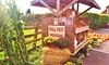 Northern Star Farm - East End South: Corn-Maze Admission with Hayride and Hot-Apple Cider for Two or Four at Northern Star Farm (Up to 40% Off)