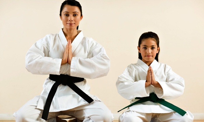 Herten Family Martial Arts - Totowa: One- or Three-Month Unlimited Karate Lesson Pass for One or Four at Herten Family Martial Arts (Up to 95% Off)