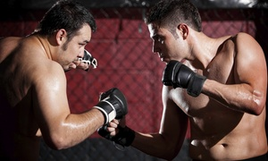 Wolf Den Mma: $50 for $100 Worth of Martial Arts — Wolfden Boxing & MMA