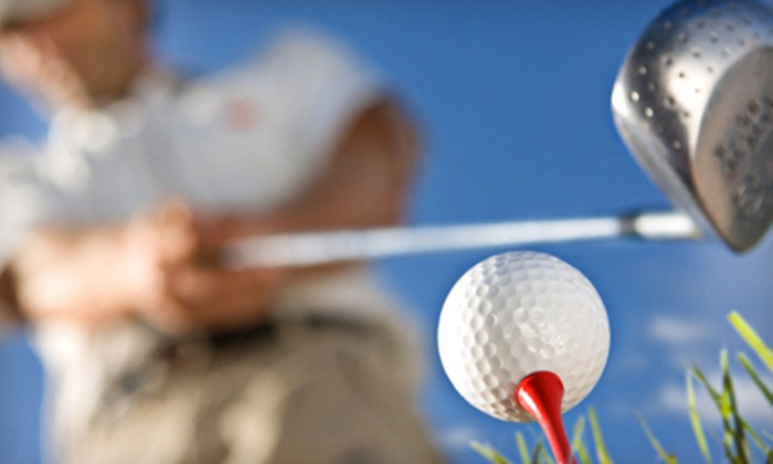 Golf4fun - Davis: One or Three 60-Minute Golf Lessons for Up to Five People at Golf4fun in Davis (Up to 72% Off)