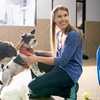 """Up to 95% Off """"Careers with Animals"""" Online Courses"""