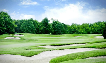18-Hole Round of Golf for One, Two, or Four at Vineyard Golf at Renault (Up to 56% Off)