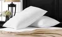 2-Pack Soft Exquisite Hotel Signature Pillows