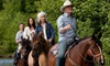 ML Performance Horses - Clovis: $99 for a Four-Session Horsemanship Course at ML Performance Horses ($210 Value)