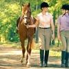 Half Off Horseback Ride & Picnic in Streetsboro