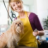 Up to 52% Off Dog Grooming Services