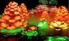 VYA Creative Lantern Corp - Chinese Lantern Festival-DUPE - Lincoln Park: Chinese Lantern Festival for Two, Four, or Six (Half Off)