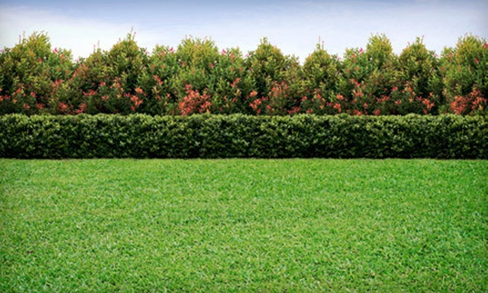 JT's Landscaping & Lawn Care - Raleigh / Durham: $49 for Lawn-Aeration Service from JT's Landscaping & Lawn Care (Up to $144 Value)