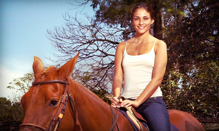 Saddleup-Austin - Austin: One or Two 30-Minute Horseback-Riding Lessons at Saddleup-Austin (Up to 51% Off)