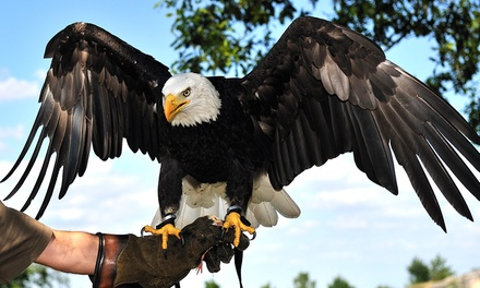 Eagle Heights Animal Sanctuary: Entry for One or Two (40% Off)