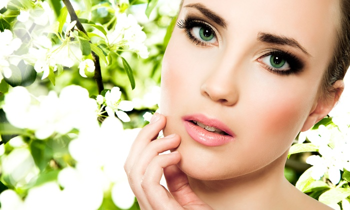 Linda's Skin Care Studio - Palm Harbor: Signature Facial or Microdermabrasion at Linda's Skin Care Studio (Up to 57% Off)