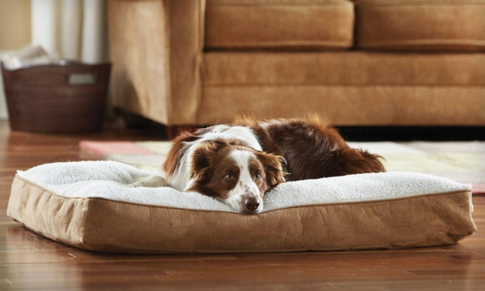 Animal Planet Sherpa Memory-Foam Dog Bed: $24.99 for an Animal Planet Large Memory-Foam Sherpa Dog Bed ($49.99 List Price). Free Shipping and Returns.