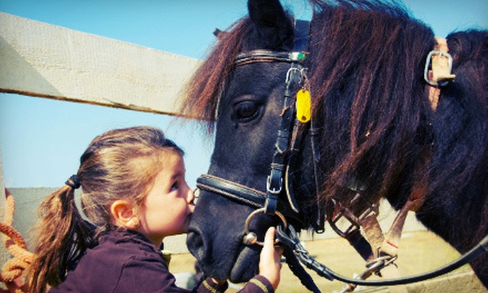 Windward Farm - Pond Road: One or Three 60-Minute Private Horseback-Riding Lessons at Windward Farm (Up to 74% Off)