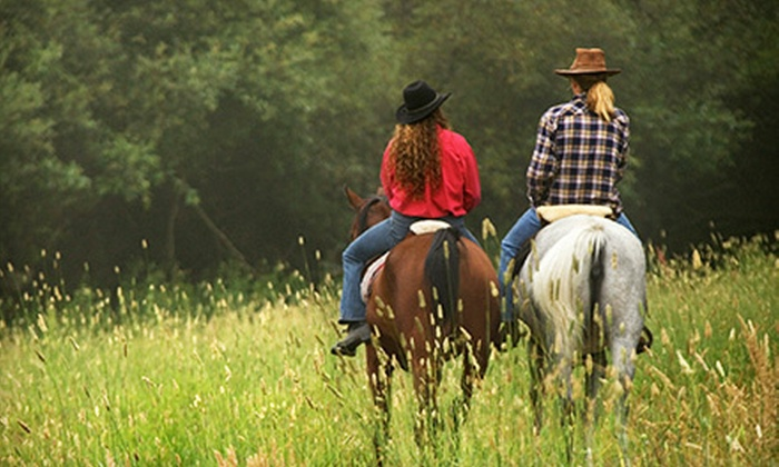 Woodloch Stable - Hugo: Horseback Trail Ride for One or Two at Woodloch Stable (Up to 53% Off)