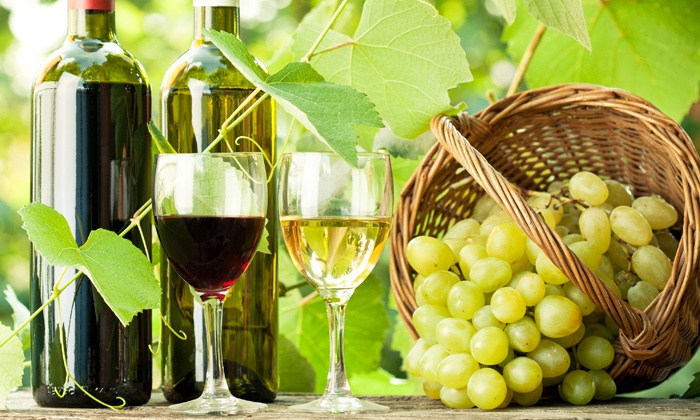 Niagara Wine Tours International - Tour Centre: Self-Guided Cycle Wine Tours for Two or Four from Niagara Wine Tours International (Up to 51% Off)