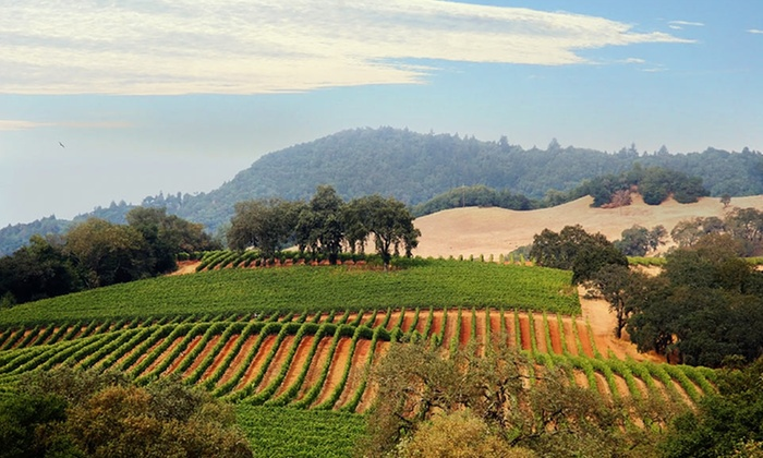 null - Reno: Stay at Vino Bello Resort in Napa Valley, CA, with Dates Available into February