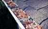 Bux-Mont Roofing: Gutter Cleaning for a Small, Medium, or Large Roof from Bux-Mont Roofing (Up to 65% Off)