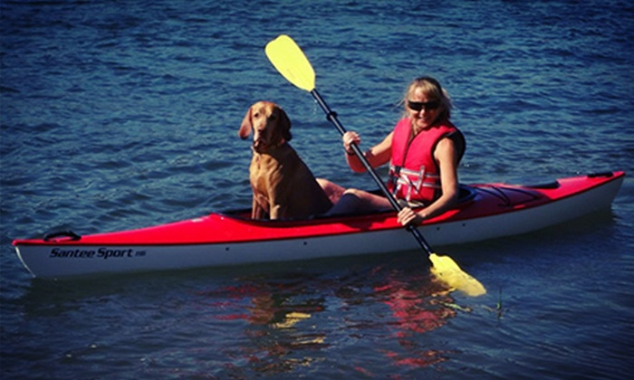 On the Water Hilton Head - Hilton Head Island: Dolphin Cruise or Guided Kayak Tour for Two from On the Water Hilton Head (51% Off)