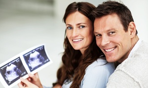 Expertly Crafted Wellness: $83 for Labor & Delivery for Daddy Class at Expertly Crafted Wellness ($189 Value)