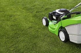 Chris' Bargain Lawn Care: $60 for $109 Groupon — Chris' Bargain Lawn Care