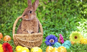 Easter Bunny Tea: Easter Bunny Tea for Two at Premier Centre for the Arts on March 29 or April 4 (Up to 52% Off)