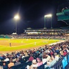 Sugar Land Skeeters – 51% Off Baseball Game