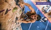 Rockreation (LA and OC) - Costa Mesa: Intro to Rock-Climbing Class for One or Two or Climbing Series for One at Rockreation (Up to 51% Off)