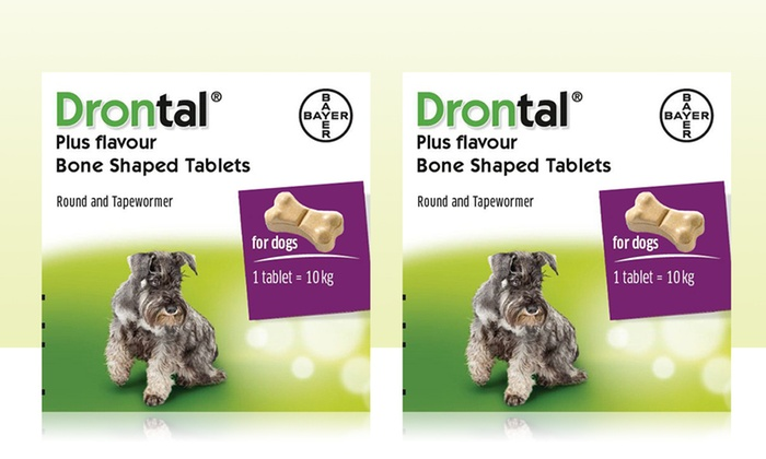 Flavoured Dog Worming Tablet Groupon Goods