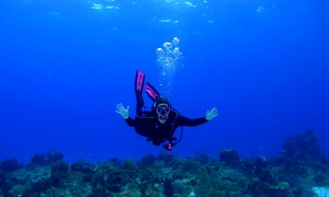 Sink or Swim Scuba: Scuba Certification with Magazine Subscription or Buoyancy Class at Sink or Swim Scuba (Up to 65% off)