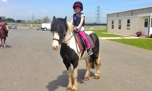Mill House Riding Centre: One or Two Children's Pony Riding Lessons with a Soft Drink at Mill House Riding Centre (Up to 44% Off)