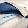 $29 for 2 Reversible Down-Alternative Throws