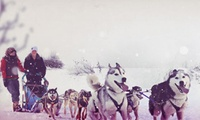 $89.99 for a 1-Hour Dogsledding Ride for Two with Expédition Hautes-Laurentides ($196 Value)
