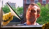 Blue Sky Star, Inc - Chicago: Interior and Exterior Cleaning on Up to 20 or 30 Windows, or Gutter Cleaning from Blue Sky Star, Inc (Up to 62% Off)