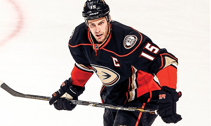 Anaheim Ducks - Honda Center : Anaheim Ducks Game Package with Ticket, Hot Dog, and Drink at Honda Center on February 3 (Up to 15% Off)
