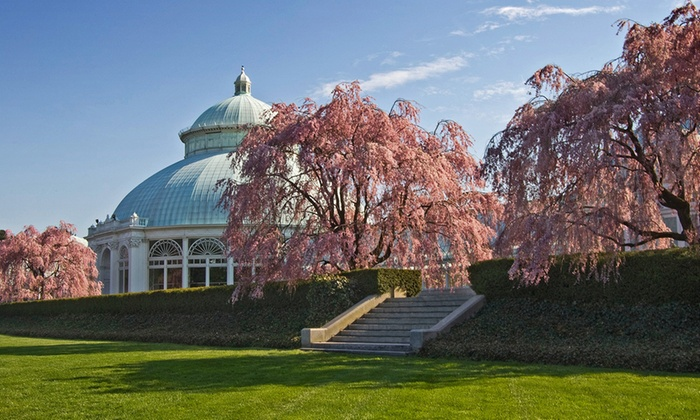 The New York Botanical Garden - Bronx Park: Spring Festival for One or Two Adults at The New York Botanical Garden (Up to 18% Off). Six Options Available.