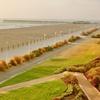 Oceanfront Hotel in Virginia Beach