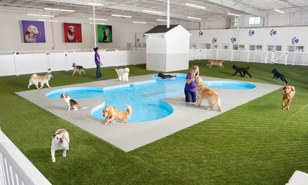 Two, Four, or Seven Nights of Dog Boarding Plus 50% Off Airport Parking at Paradise 4 Paws (Up to 61% Off)