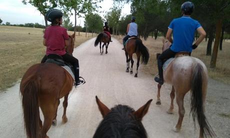 Ruta a caballo para 2 o 4 personas con refresco y snack desde 24,95 € en Hípica Baytar