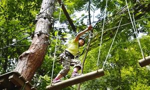 Kletterwald Kriebstein: 150 Minuten Klettern für 1-4 Personen im Kletterwald Kriebstein (bis zu 50% sparen*)