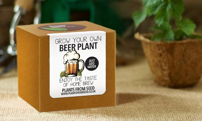FAR crescere IT Crescere Il Tuo piante carnivore Insetto Mangia piante confezione regalo
